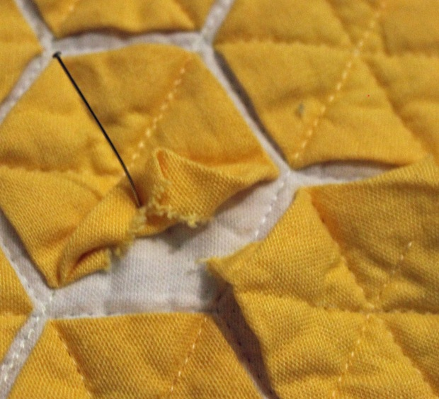 yellow hexies up close
