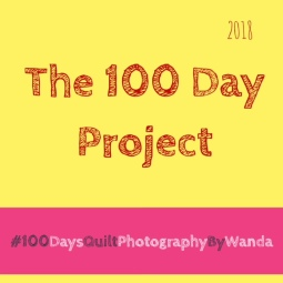 100 day project for wp