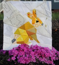 Day Five bunny phlox garden