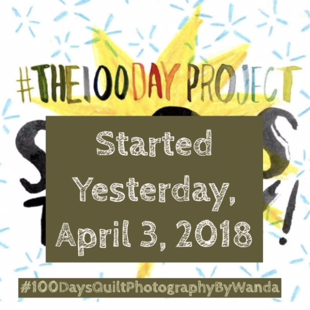 the 100 day project logo 2018